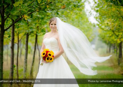 Cathleen_Clark_Wedding-004
